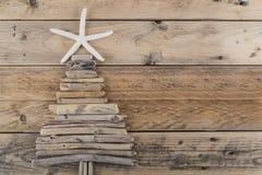 海星和漂流木头圣诞树 库存图片