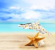 海星和贝壳在一把伞下在一个沙滩 免版税库存图片