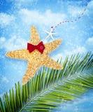 海星圣诞节装饰 免版税库存图片