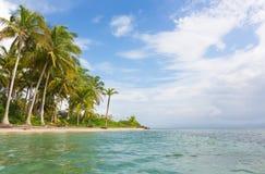 海星靠岸, Bocas del托罗,巴拿马 免版税库存照片