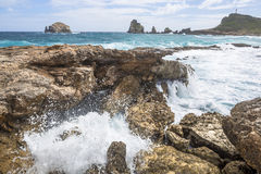 海景在Pointe des大别墅的一个大风天在瓜德罗普 免版税库存图片