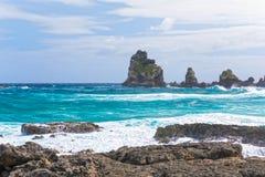海景在Pointe des大别墅的一个大风天在瓜德罗普 图库摄影