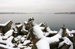 海景多雪的冬天 免版税库存图片