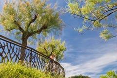 年轻海景夫妇赞赏的秀丽在大西洋海岸的与开花的树的春天在蓝天在巴斯克国家 图库摄影