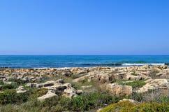海景 与植被的平的岩石 没有云彩的蓝天 免版税库存图片