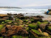海景@卷毛卷毛海滩, NSW澳大利亚 免版税图库摄影