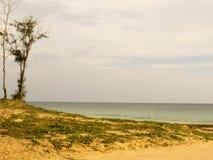 海景 库存图片