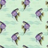 海样式 库存照片