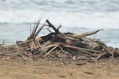 海污染 免版税库存图片