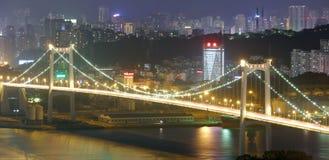 海沧桥梁夜视图 库存图片