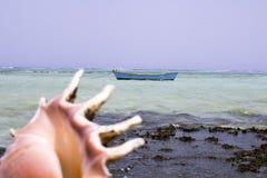 海沿海海岸在埃及,红海在非洲,壳在水的海浪小船 库存照片