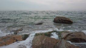 海波浪和岩石岸在阴天-平底锅 股票视频