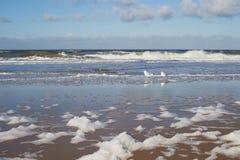 海波浪和泡沫 免版税库存图片