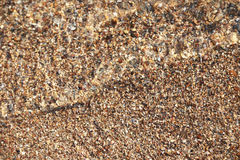 海泼沙子海滩的软的波浪 免版税库存照片