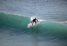 海洋冲浪者 库存图片