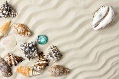 海洋夏天明信片 贝壳与在海滩的沙子毗邻 库存照片