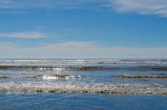 海洋太平洋西北地区海岸线海滩波浪  免版税库存照片