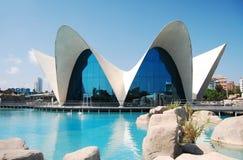 海洋学的水族馆