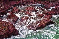 海洋晃动通知 库存图片