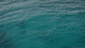 海洋水纹理的特写镜头,海 慢的行动 股票录像