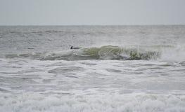 海洋水 库存照片