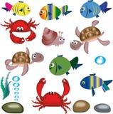 海洋的动物 免版税库存照片