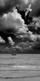 海洋风景 图库摄影