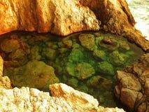 海浇灌了水池 库存图片