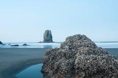 海浪在大炮海滩俄勒冈的黎明 免版税库存照片