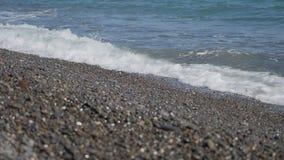海浪在Pebble海滩打破 股票视频