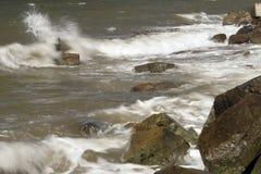 海浪敲打 免版税库存图片