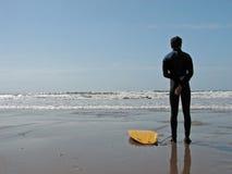 海浪注意 库存照片