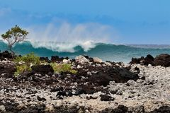 海浪的美好的力量在La Perouse海湾的在毛伊 免版税库存照片