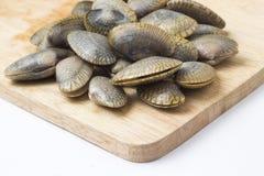 海浪蛤蜊 免版税库存照片
