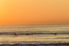 海浪滑雪桨手早晨波浪 免版税图库摄影