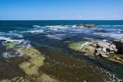 黑海海岸的美好的海景在察雷沃,保加利亚附近的 Arapya海湾 免版税库存照片