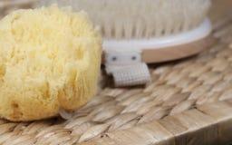 海海棉擦洗的沐浴刷子 免版税库存照片