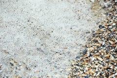 海海浪和壳 免版税库存照片