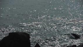 海海浪,舔岩石的波浪 影视素材
