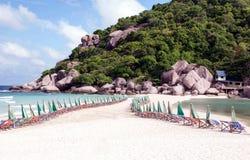 海海滩和河树 免版税库存图片