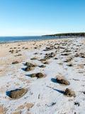 冻海海滩 免版税库存照片
