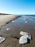 冻海海滩 免版税库存图片