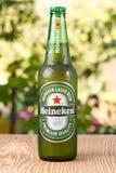 海涅肯储藏啤酒 免版税库存照片