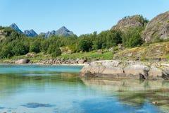 海湾、石头和绿草在夏天, Arsteinen海岛, Lofoten群岛,挪威的绿松石水 图库摄影