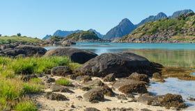 海湾、石头和绿草在夏天, Arsteinen海岛, Lofoten群岛,挪威的绿松石水 库存图片