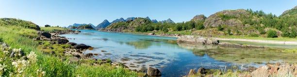 海湾、石头和绿草在夏天, Arsteinen海岛, Lofoten,挪威的绿松石水 图库摄影