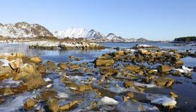 海湾全景低潮的在与山在backgrond和美丽的石头和冰的冬天在前景, lofoten isl 免版税库存照片