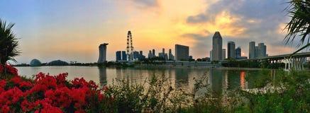 滨海湾公园和新加坡市全景  免版税图库摄影