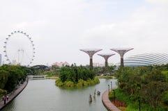 滨海湾公园在新加坡 免版税库存照片