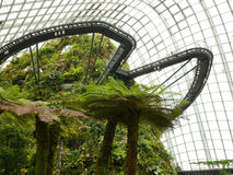 滨海湾公园的,新加坡云彩森林 免版税库存图片